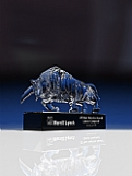 Crystal Bull Award