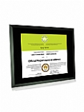 GBA - Black Glass Certificate Frame Award