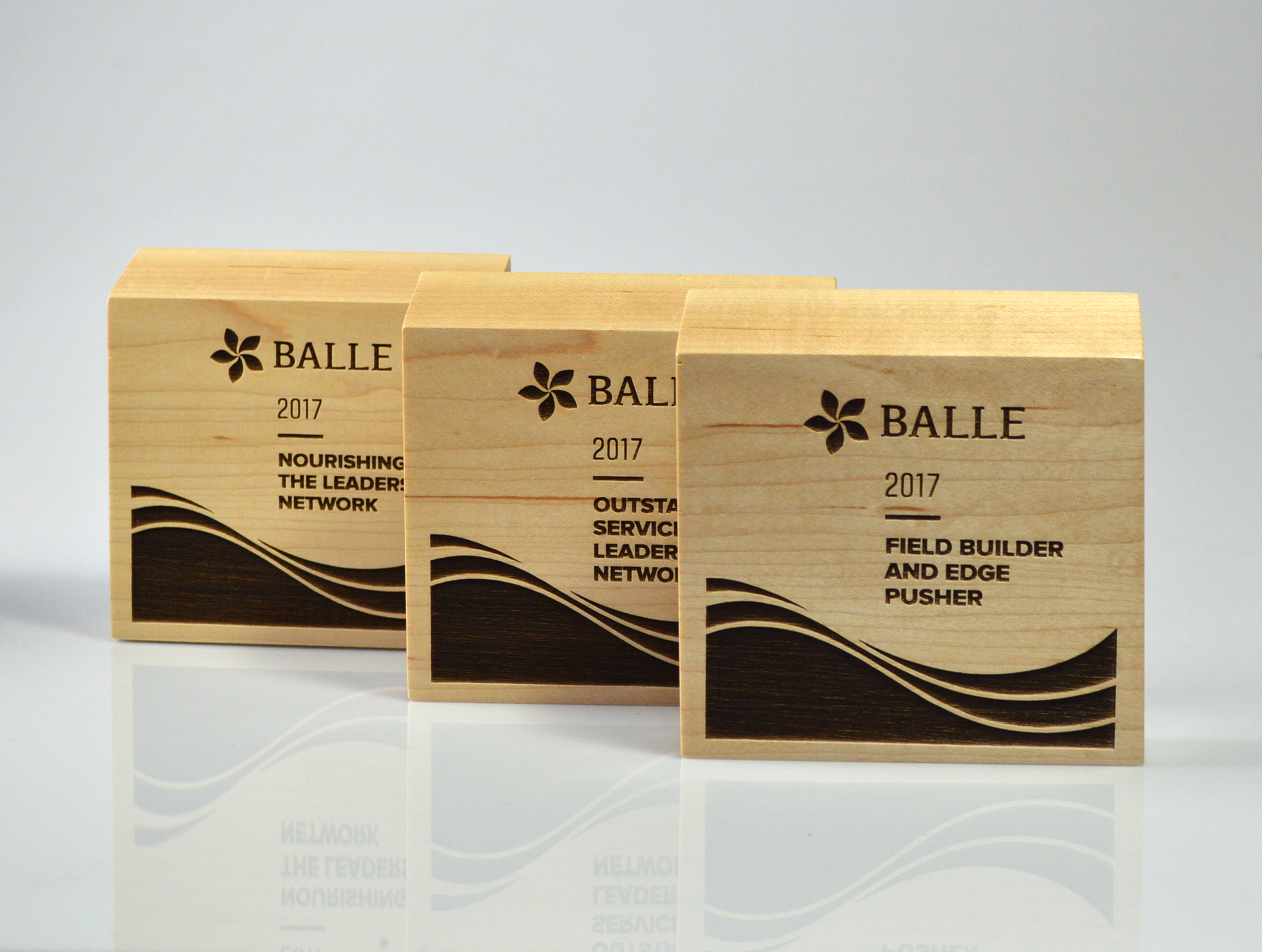 BALLE-Neighborhood Award-3