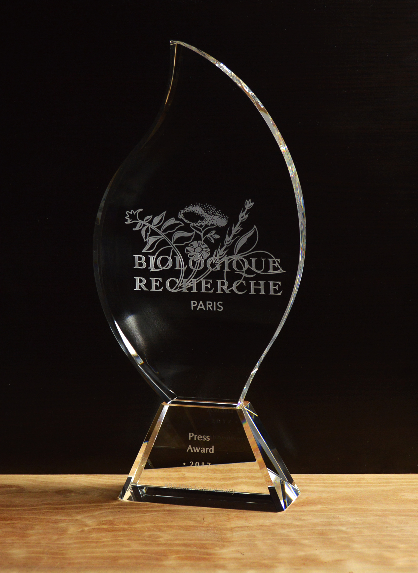 Silhouette Crystal Award 3