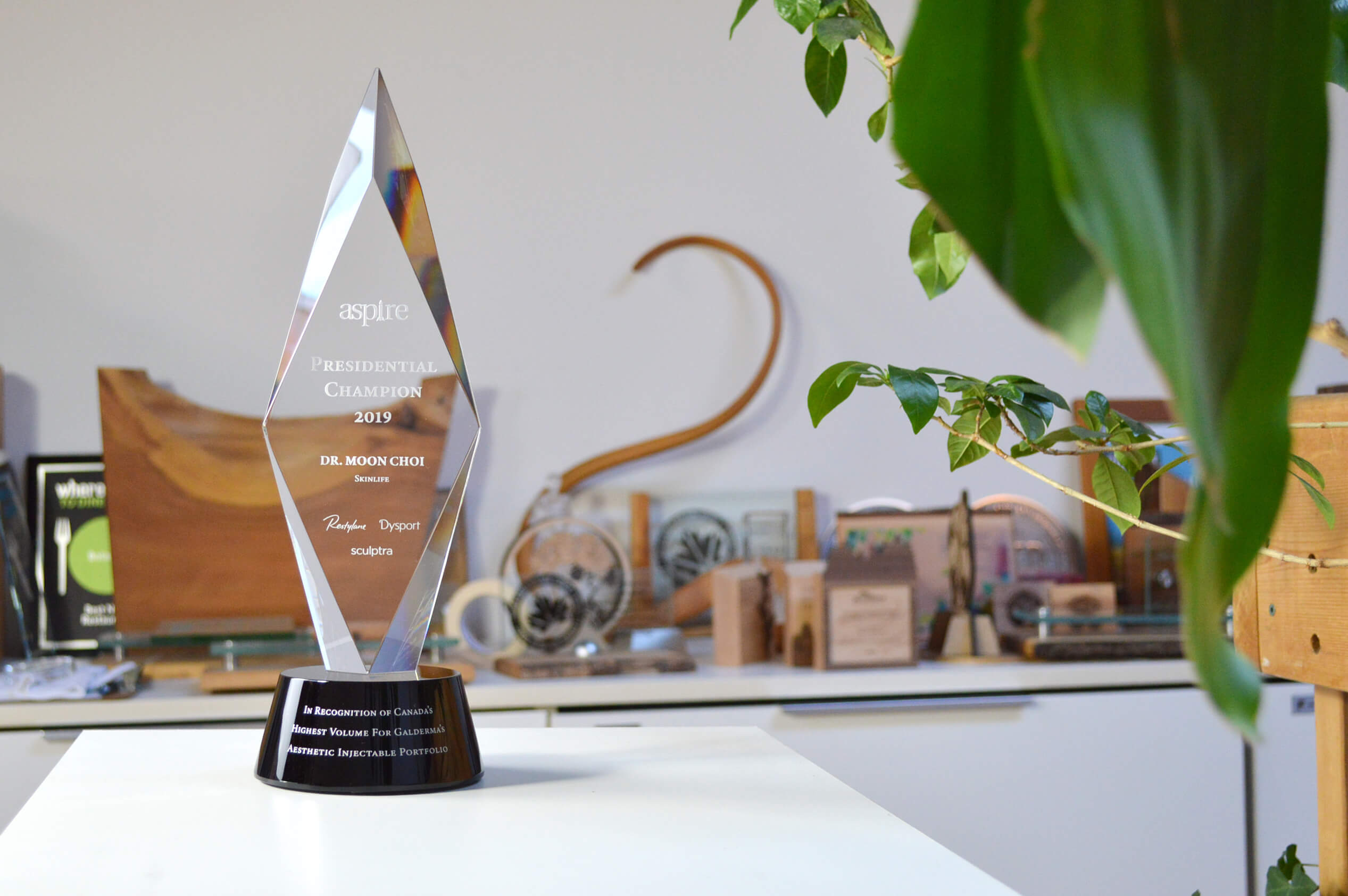 unique-custom-engraved-customized-sandblasted-crystal-employee-recognition-trophy-canada-3