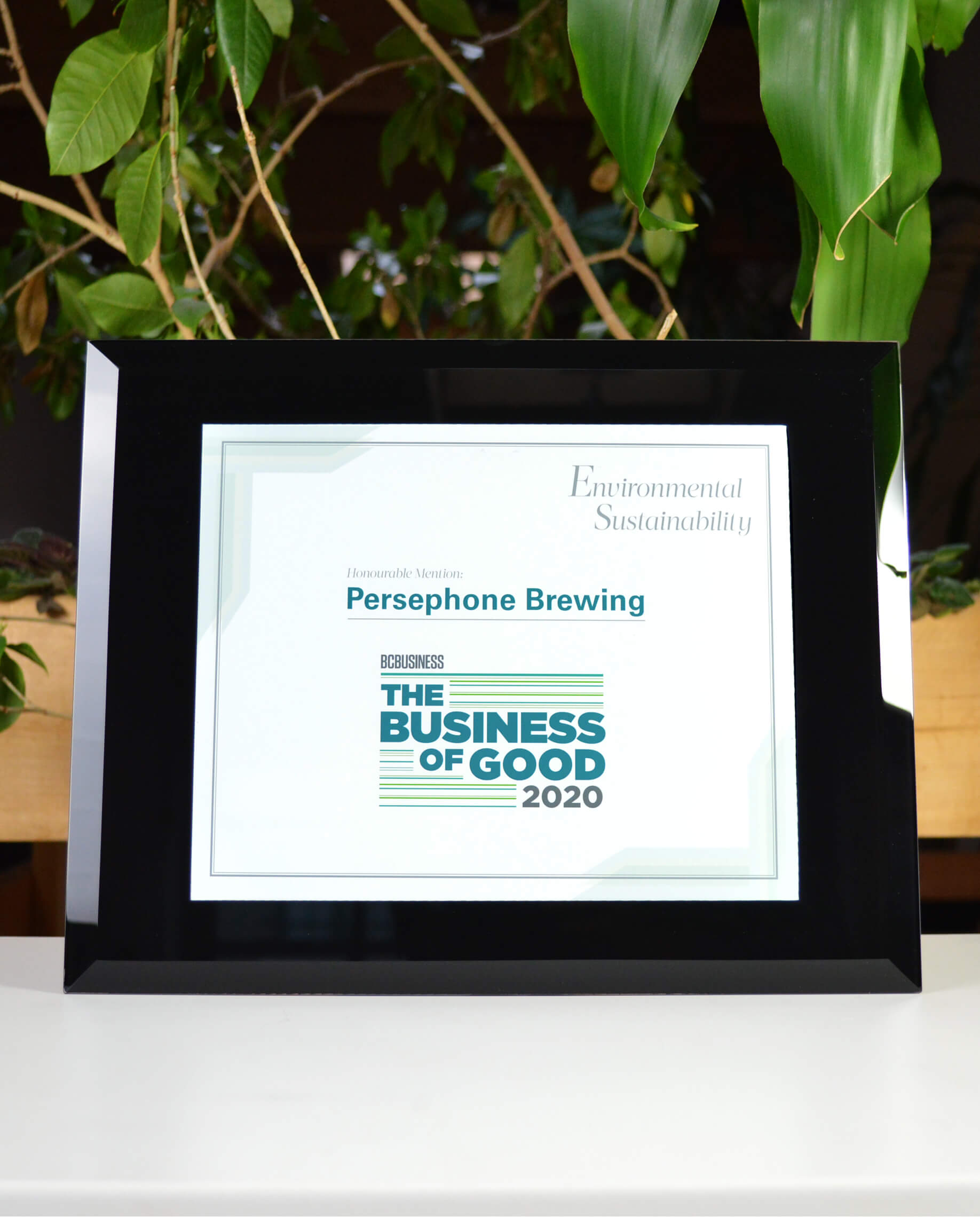 unique-customized-wall-plaque-custom-certificate-frame-corporate-trophy-plaque
