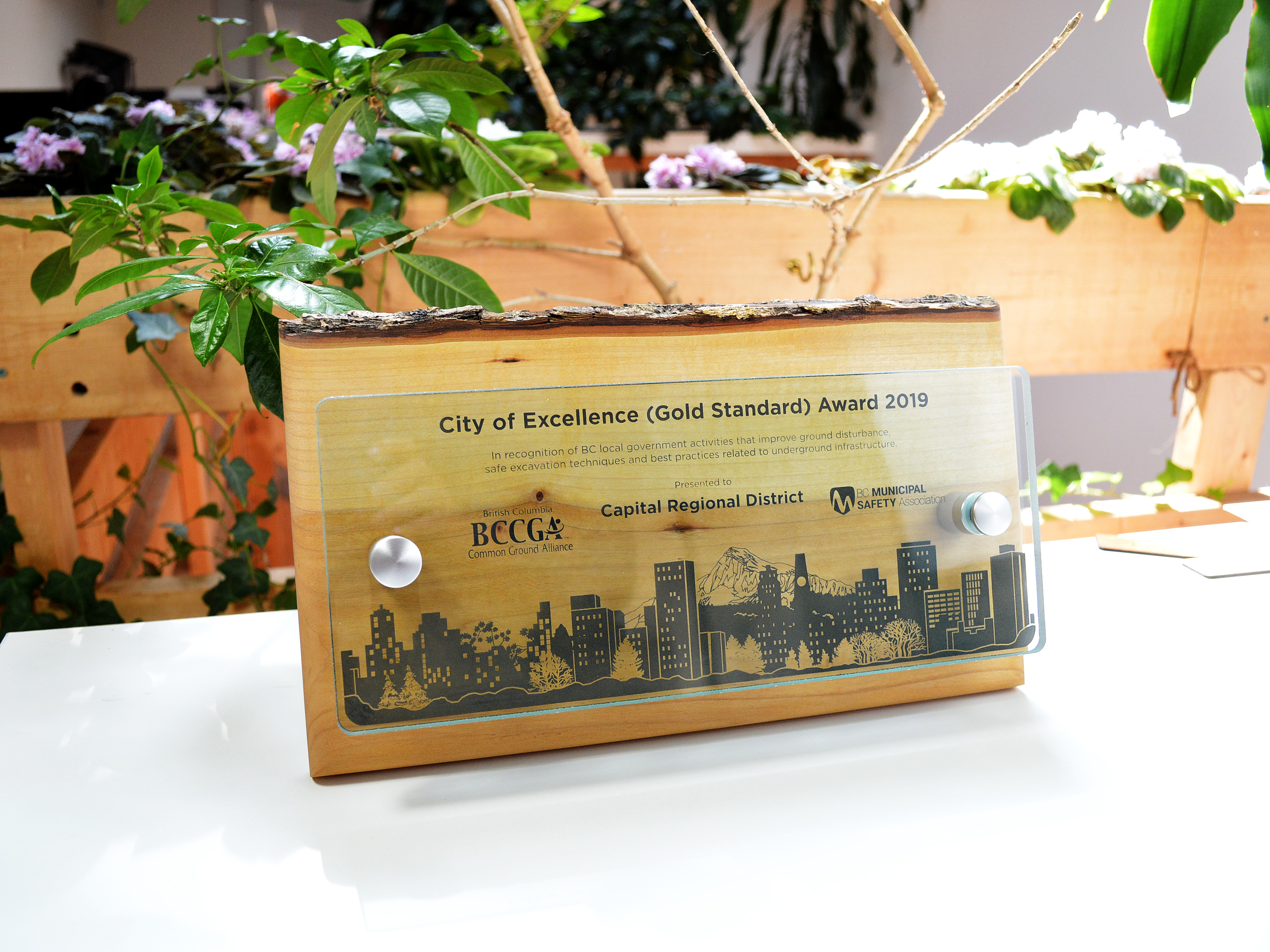 BC Common Ground Alliance - Canopy Plaque 3