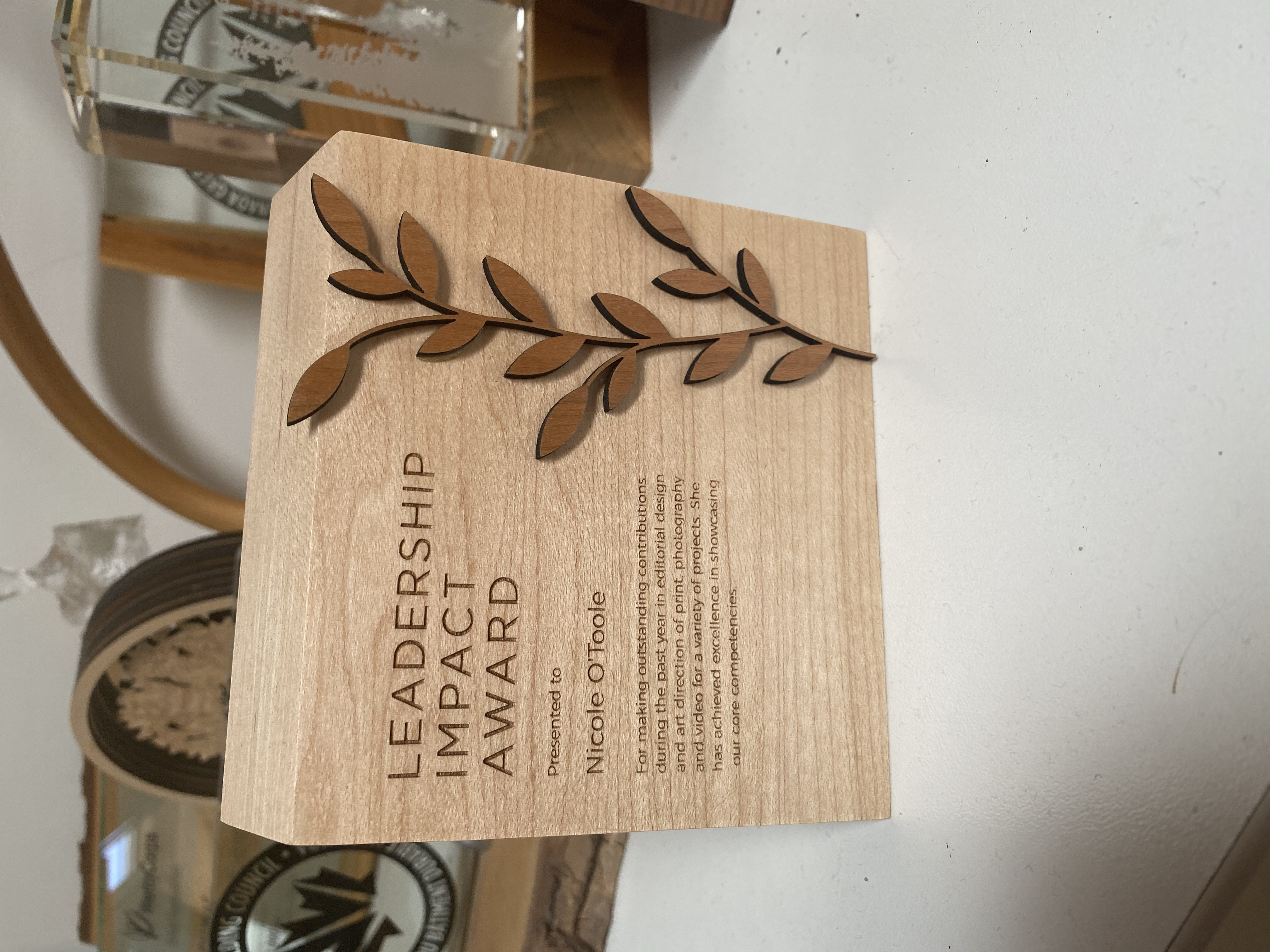 sustainable-customized-plaques-laser-engraved-eco-friendly-nonprofit-award-canada-3