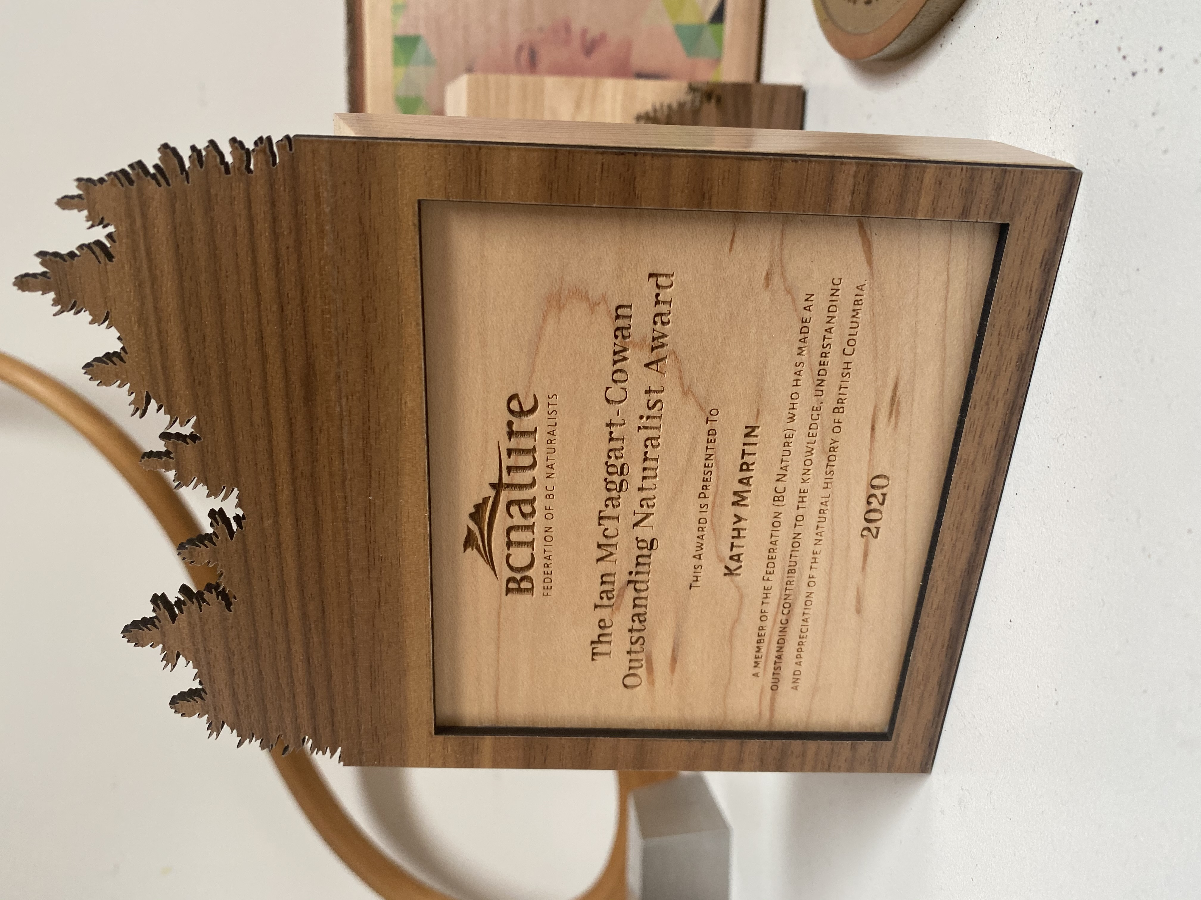 sustainable-customized-plaques-laser-engraved-eco-friendly-nonprofit-award-canada-4