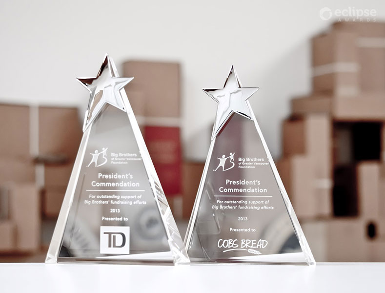 classic-customized-crystal-awards-and-trophies_nonprofit-recognition-award-vancouver-trophy-shop