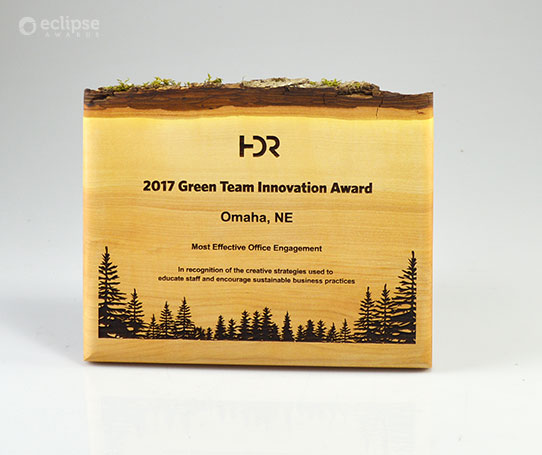 green-innovation-eco-friendly-wood-wall-plaque_corporate-recognition-award_canada-nature-plaque