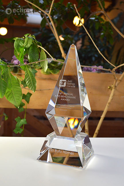 modern-crystal-trophy-customized-engraved-corporate-recognition-award-north-america-5