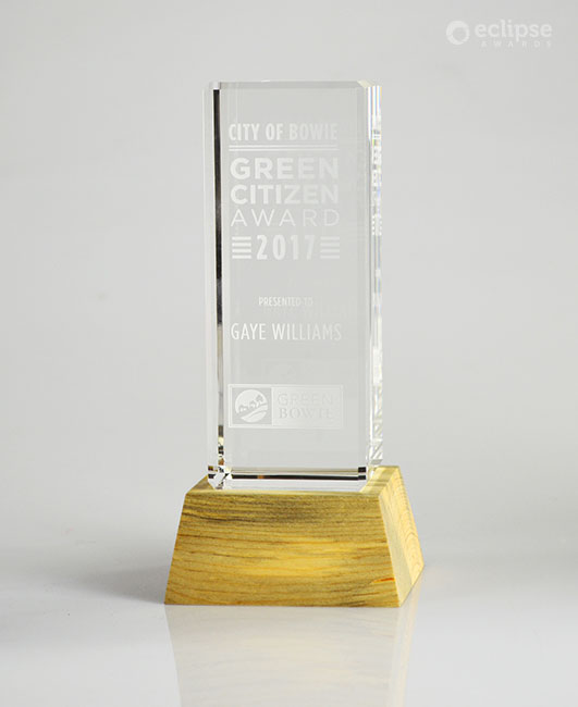 modern-customized-eco-friendly-nonprofit-trophy-design-engraved-crystal_trophy-shop-north-america