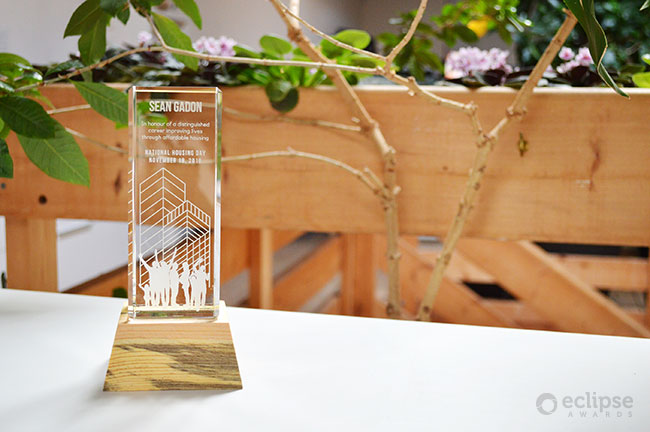 modern-eco-friendly-customized-trophy-design-engraved-crystal-and-wood-trophy-canada-4