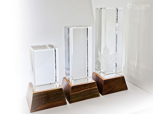 modern-engraved-salvaged-wood-and-glass-environment-award-trophy-bc-3