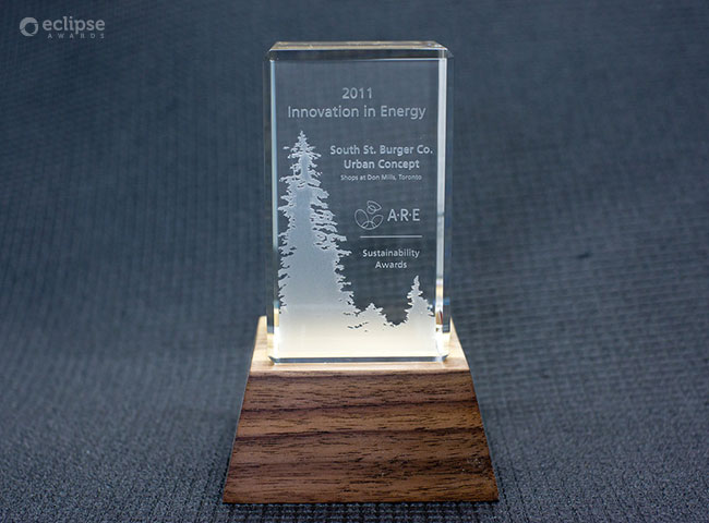 modern-engraved-salvaged-wood-and-glass-environment-award-trophy-canada