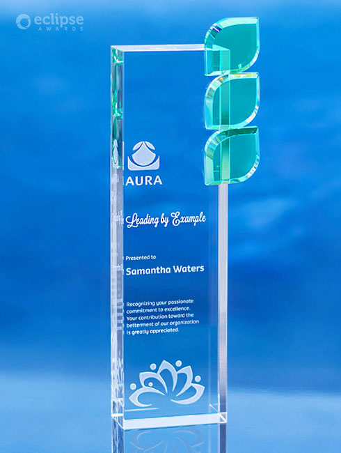 modern-personalized-sandblasted-glass-non-profit-nature-themed-trophy-vancouver-regeneration-award-2