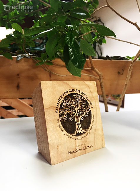 sustainable-customized-laser-engraved-eco-friendly-green-maple-charity-recognition-award-trophy-engraving-bc