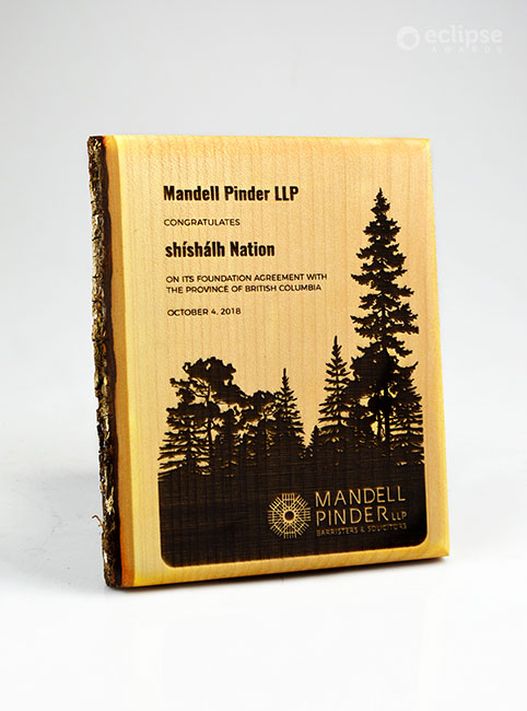 unique-eco-friendly-green-salvaged-wood-wall-plaque_corporate-recogniton-award-Canada_forest-award-4