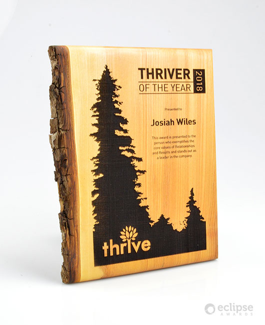 unique-eco-friendly-green-salvaged-wood-wall-plaque_corporate-recogniton-award-Vancouver_forest-award-8