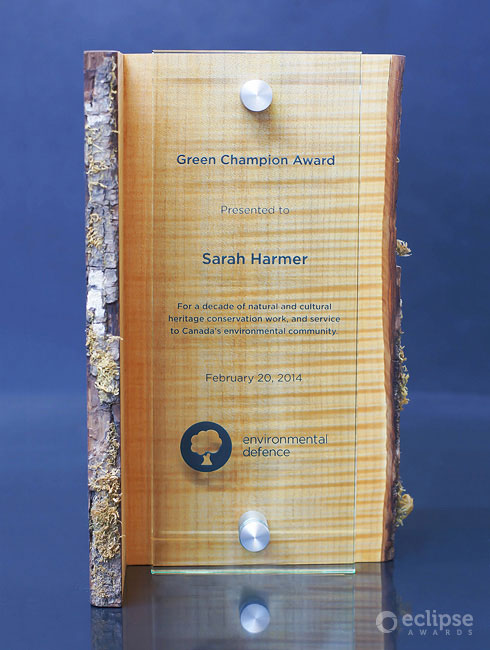 unique-eco-friendly-salvaged-wood-and-glass-customized-trophy-environment-award-north-america