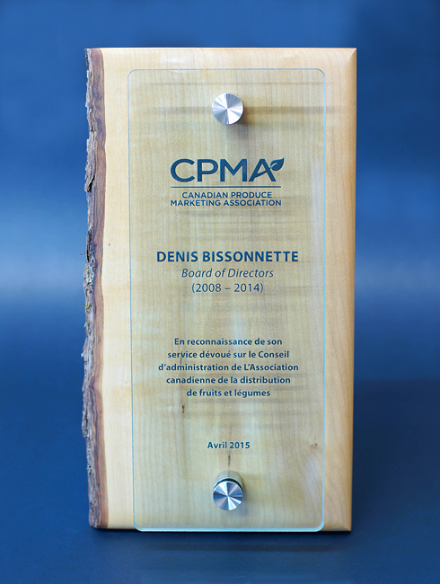 unique-sustainable-personalized-glass-and-wood-wall-plaque_corporate-recognition-trophy_canada-3