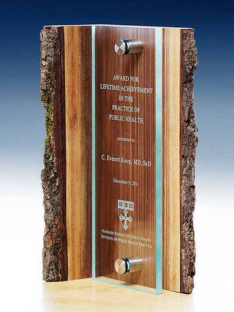 unique-sustainable-salvaged-wood-and-glass-custom-trophy-environment-trophy-usa