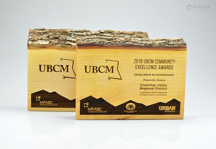 unique-sustainablility-salvaged-wood-personalized-trophy_nonprofit-recogniton-award_vancouver-trophy-shop-2